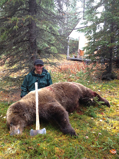 A good sized Alaska grizzly back at the camp.